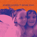 Siamese Dream (2 LP)