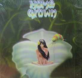 VA - Home Grown
