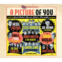 VA - A Picture Of You : Piccadilly Records (2 CD)